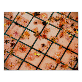 Japanese Maple Leaves on Tiled Ground Poster