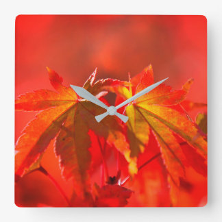 Japanese Maple Leaves Square Wall Clock