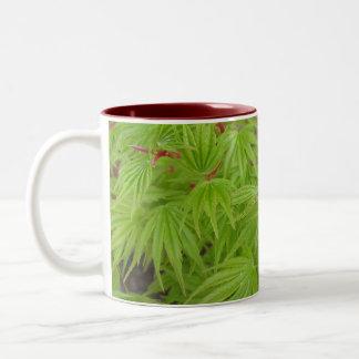 Japanese Maple Mugs