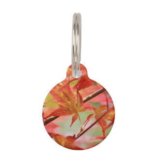 Japanese Maple Pet Name Tags