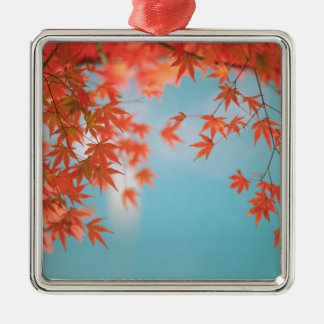 Japanese maple Silver-Colored square decoration