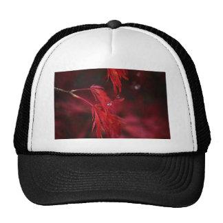 Japanese Maple with Raindrop Trucker Hat
