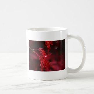 Japanese Maple with Raindrop Mugs