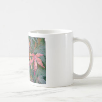 Japanese Maples Leaves in Fall - Photograph Mug
