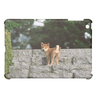 Japanese Midget Shiba 4 iPad Mini Cover