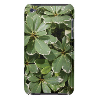 Japanese Mock Orange Case-Mate iPod Touch Barely There iPod Case