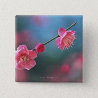 Japanese plum 4 15 cm square badge
