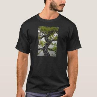 Japanese Red Pine Bonsai Tree T-Shirt