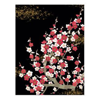 Japanese Sakura Cherry Blossom Fine Art Postcard