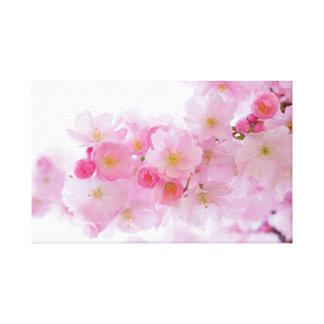 Japanese Sakura. Cherry Blossoms. Spring. Canvas Print
