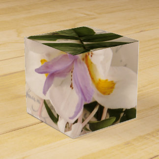 jasmine flowers and lily with script favor box favour box