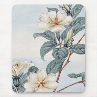 Jasmine Flowers (Vintage Japanese Art) Mouse Pad