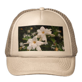 Jasmine Hat