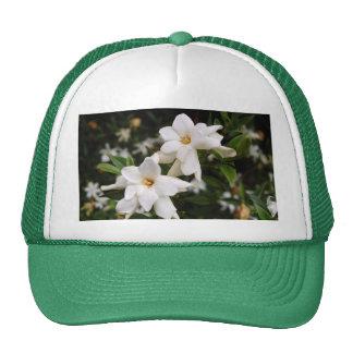 Jasmine Trucker Hats