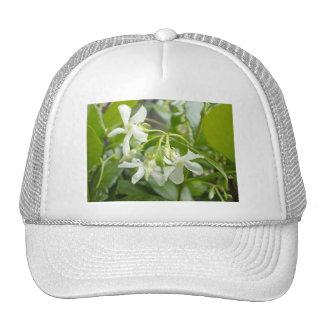 Jasmine Mesh Hat
