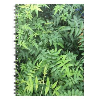 Jasmine Note Book