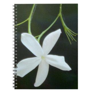 Jasmine notebook