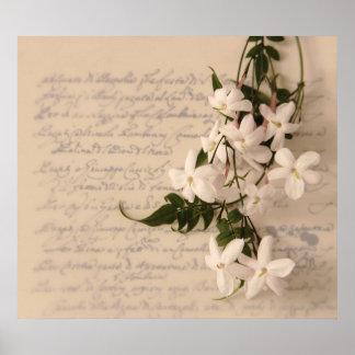jasmine on old script handwriting poster large