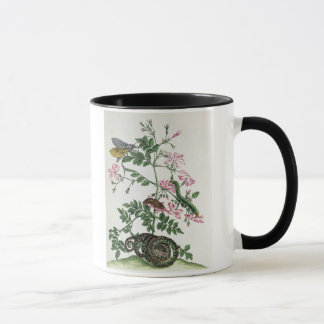 Jasmine: with snake, moth, caterpiller and chrysal mug