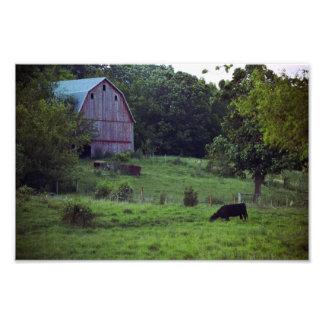 Jasper Co., Iowa Barn Scene Photo