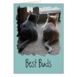 "Jasper & Kaylee Kitten ""Best Buds"" Card"