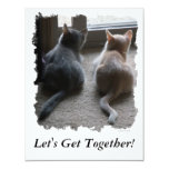 "Jasper & Kaylee Kitten ""Let's Get Together"" Invite 11 Cm X 14 Cm Invitation Card"