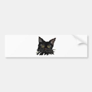 JASPER -your HALLOWEEN Black Cat Bumper Sticker