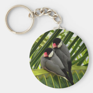 Java Sparrow Key Ring