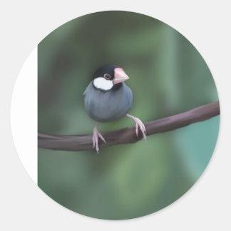Java Sparrows Round Sticker