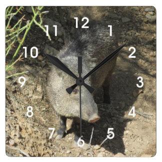Javelina Square Wall Clock
