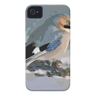 Jay Bird In Winter iPhone 4 Cover