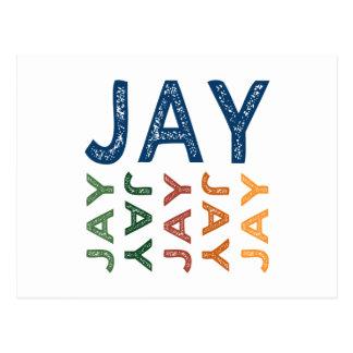 Jay Cute Colorful Postcard