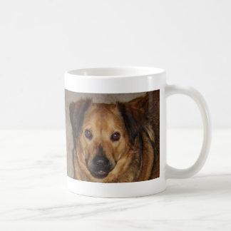 jazz2 mugs