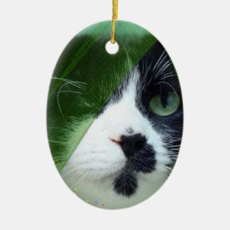 Jeb Cat Ceramic Oval Decoration