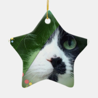 Jeb Cat Ceramic Star Decoration