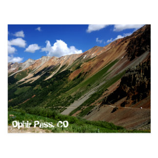 Jeeps on Ophir Pass in Colorado Postcard