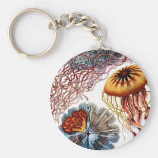 Jelly Fish by Ernst Haeckel Basic Round Button Key Ring