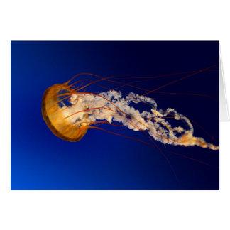 Jelly fish card