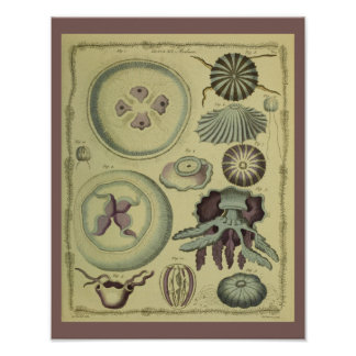Jelly Fish Purple Vintage Art Print