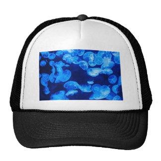 Jellyfish Cap