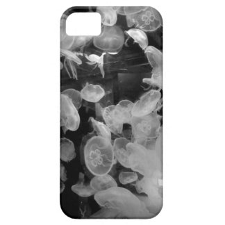 Jellyfish Case