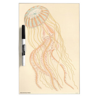 Jellyfish Dry Erase White Board