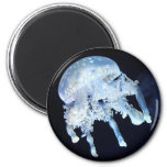 Jellyfish Fridge Magnet