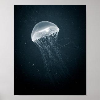 Jellyfish Glow | Poster