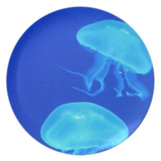 Jellyfish North Carolina Aquarium Plate