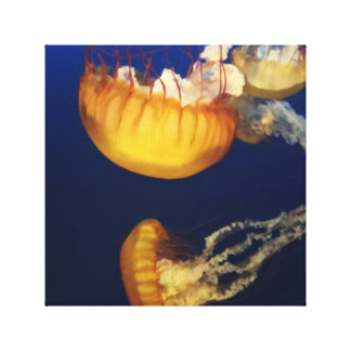 Jellyfish Stretched Canvas Print