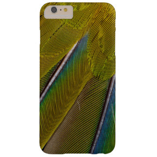Jenday Conure Feather Design Barely There iPhone 6 Plus Case