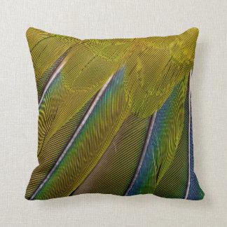 Jenday Conure Feather Design Cushion