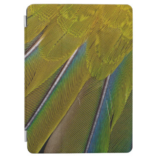 Jenday Conure Feather Design iPad Air Cover
