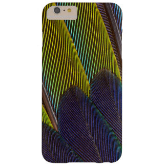 Jenday Conure Feather Detail Barely There iPhone 6 Plus Case
